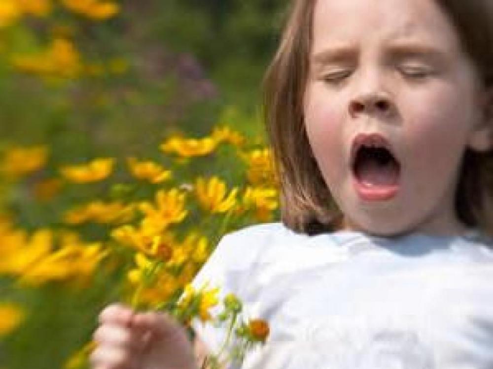 Bahar alerjisi belirtileri nelerdir? galerisi resim 2