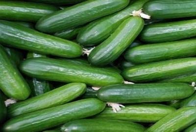 Salatalığın bu faydalarını biliyor muydunuz? galerisi resim 5