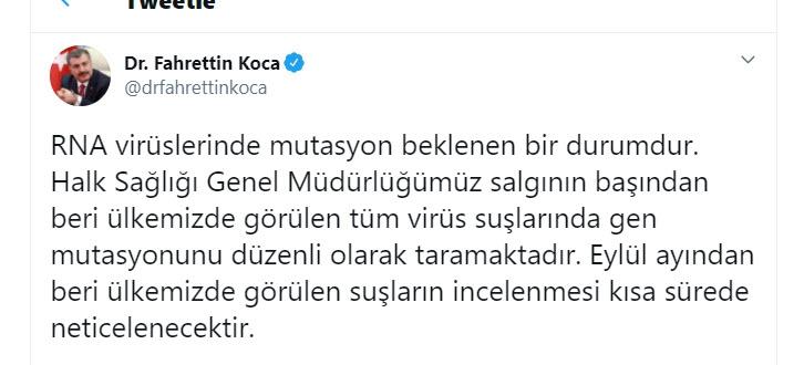 Koronavirüs mutasyonu Türkiye'de görüldü mü? Bakan Koca ve Bilim Ku galerisi resim 13