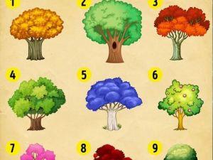 Bir Ağaç Seçin