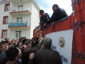 Bingöl'de 31 Bin Fidan Dağıtıldı