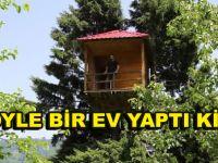 Ağacın Tepesine Öyle bir yere ev yaptı ki! –