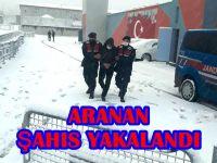 ARANAN ŞAHIS YAKALANDI